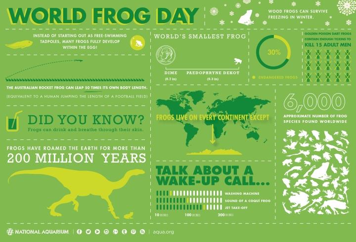 worldfrogdayinfographicjpg