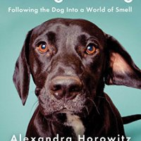 Being a Dog * Following the dog into a World of Smell