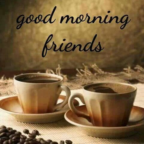 Good Morning Friends *