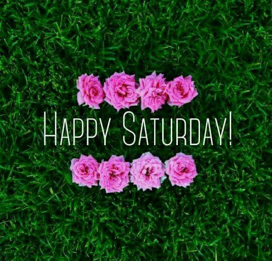 Happy Saturday !!