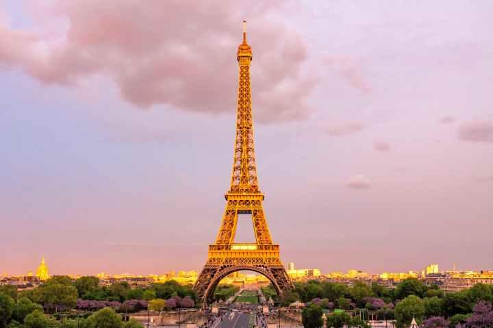 Birthday Wish *Paris