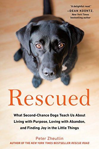 National Rescue DogDay