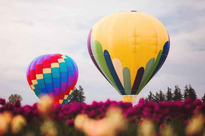 Hot Air BalloonDay