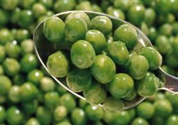 greenpeas2