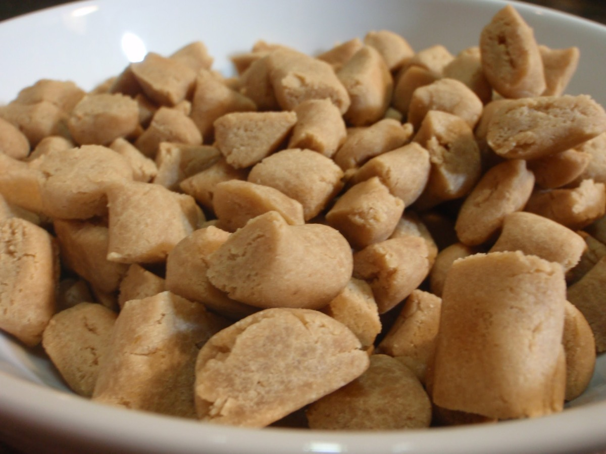 Can You Give A Dog Peanut Butter Everyday