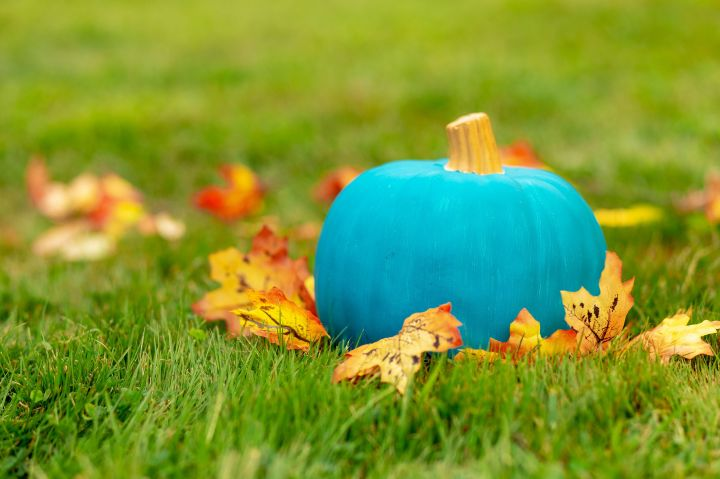 teal-pumpkin-outside-royalty-free-image-1034081528-1537902936