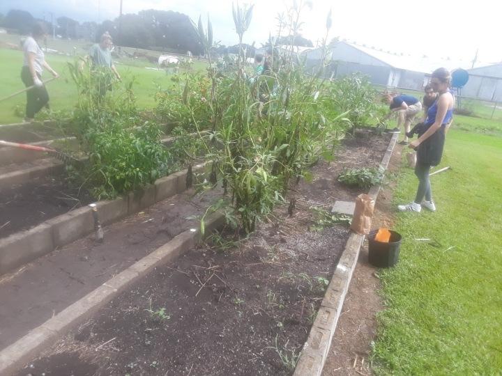 Spring Garden Planning and Journals: