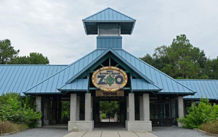 Baton Rouge Zoo * FrozenSafari