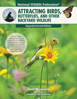 Book Review : Attracting : Birds,Butterflies and other backyard wildlife