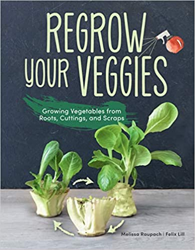 Regrow Your Veggies: Growing Vegetables
