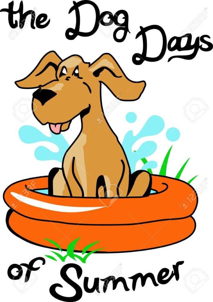 Dog's Day ofSummer
