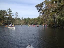 Let's Go Paddling :Kayaking