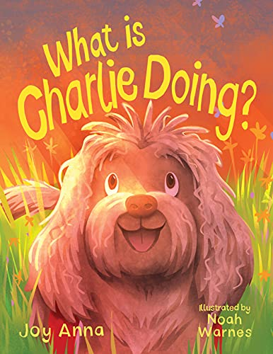 Book Review :  What is CharlieDoing?