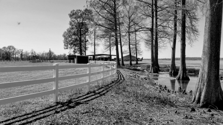 CBWC: Fences andGates