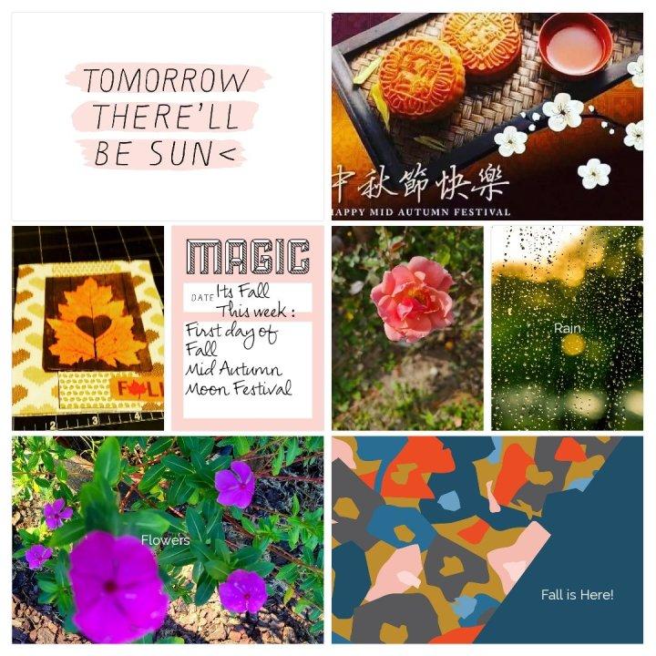 September 23: Projectlife